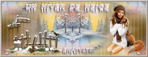 Bannière de Noêl