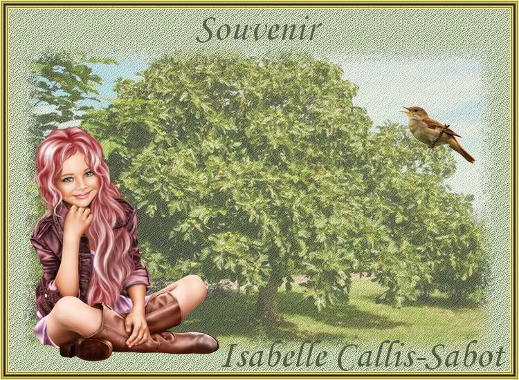 """"""" Souvenir """" poème d' Isabelle Callis-Sabot"""