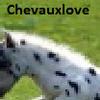 chevauxlove