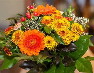 Résultat d'images pour images merveilleuses fleurs d'automne