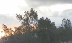 Photos prises depuis Piton Hyacinthe en 2012
