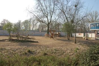 zoo cologne d50 2012 003