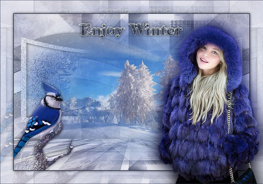 ENJOY WINTER