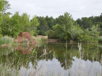 Le lac Canetti