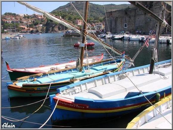 Collioure_Aout07_311