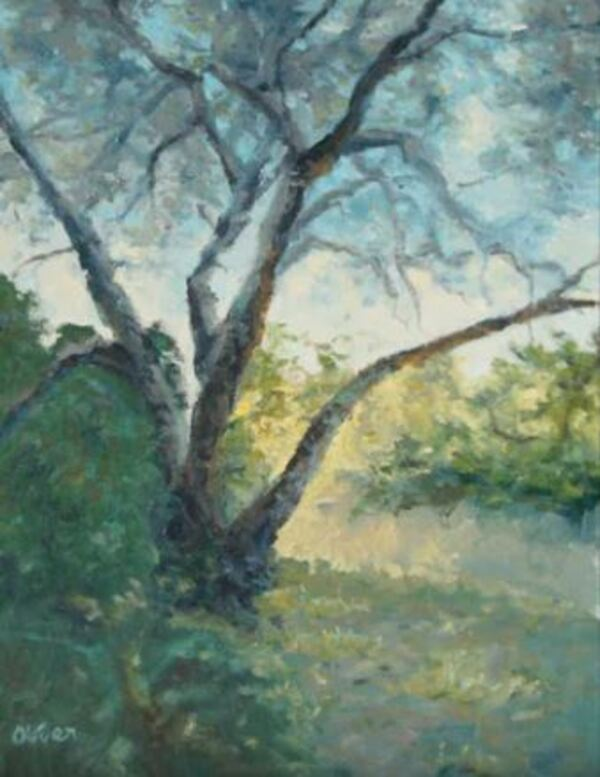 Dessin et peinture vid o 1829 peindre un arbre dans un for Peinture glycero ou acrylique