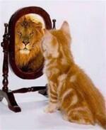 miroir, ô mon miroir (3 heures)
