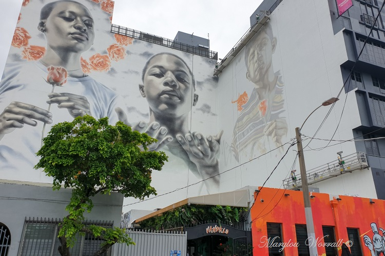 Floride : Miami Wynwood Walls and art gallery 3/3