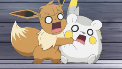 Pokémon Saison 22 Épisode 13 à 30 VF ( Français) en Streaming et Replay