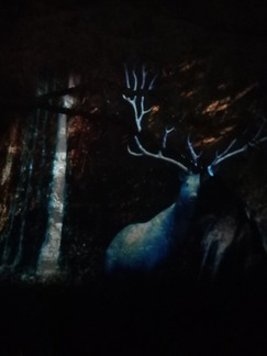 """Sortie """" Domaine des Grottes de Han"""""""