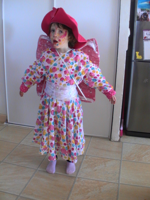 Costume papillon Camille carnaval 2013