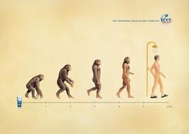 pub evolution Veet