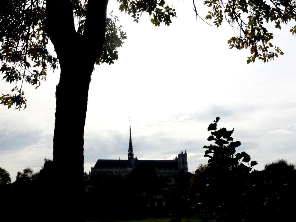 Sélection de la Cathédrale, l'hiver