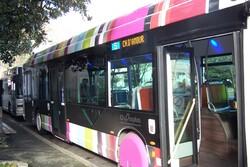 Chronoplus, les bus de Bayonne
