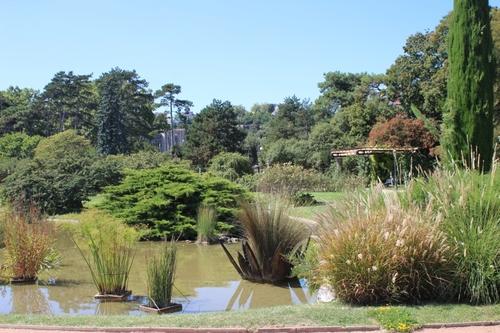 Les roses de Lyon au parc de la tête d'or