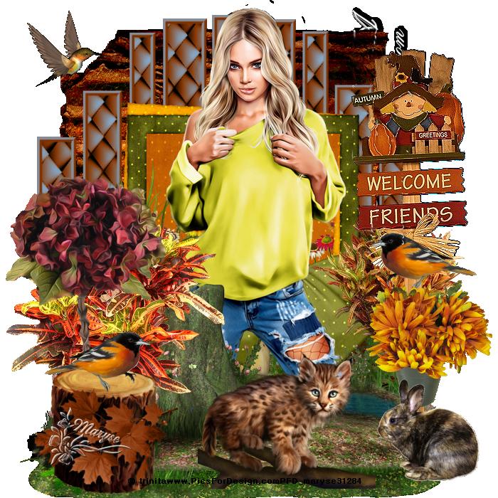 Encadrement automne