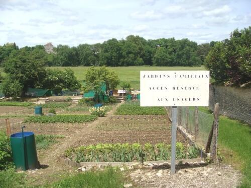 Les jardins familiaux du Petit Versailles