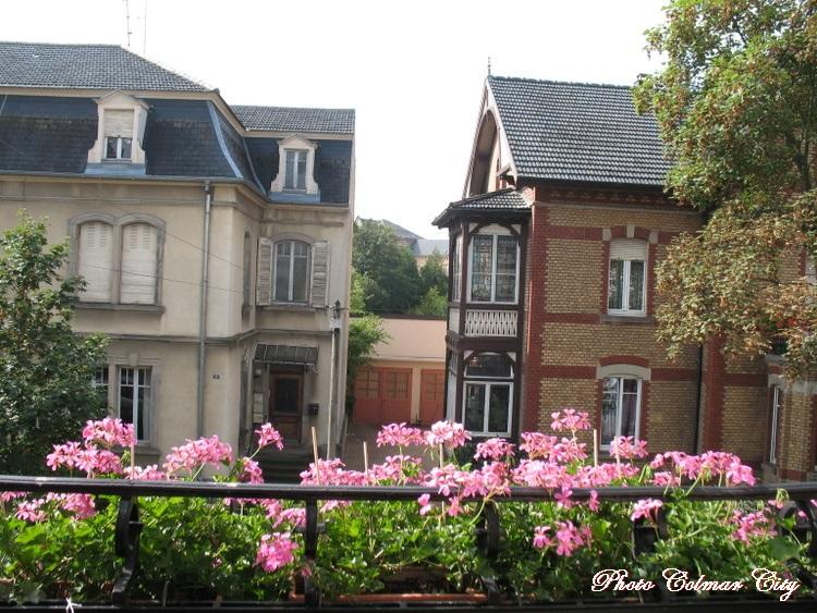 Ciel d'Alsace 181