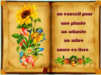 livre de conseils jardinage