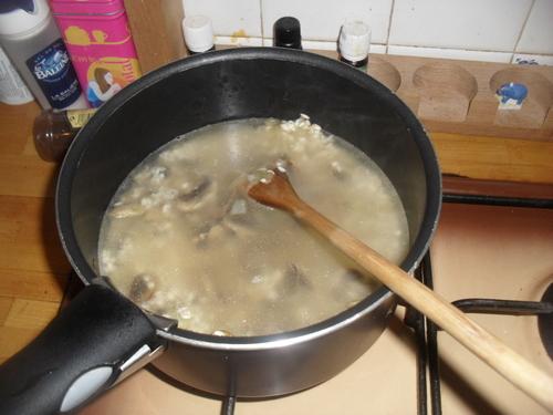 Allé, pour commencer, un petit risotto aux champignons et au fromage de chèvre