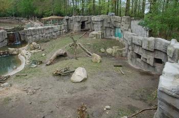 Zoo Osnabruck d50 2012 112