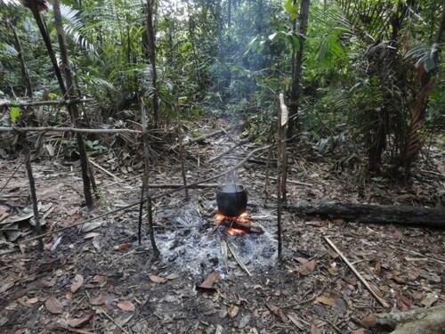 Manaus : Man Vs Wild