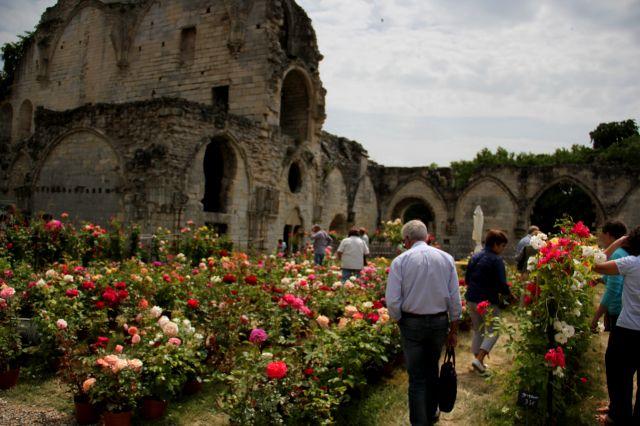 Les journées de la Rose à Chaalis : Day 3