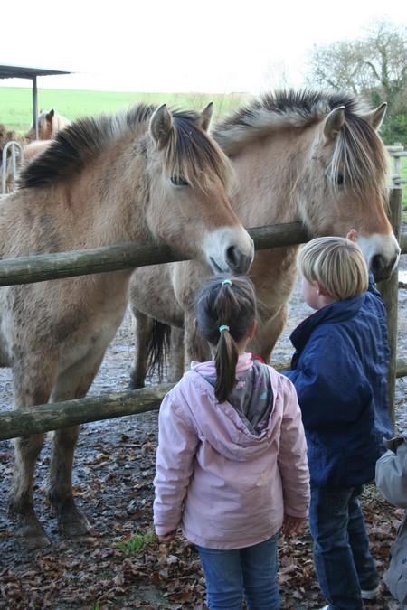 Visite  de la ferme Eden à St Vougay