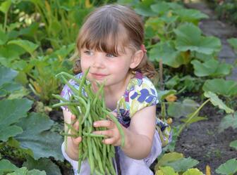 Privilégiez l'agriculture bio et locale pour une vie plus saine.