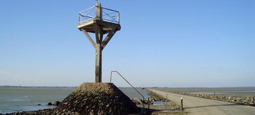 Ile de Noirmoutier  ( Vendée )