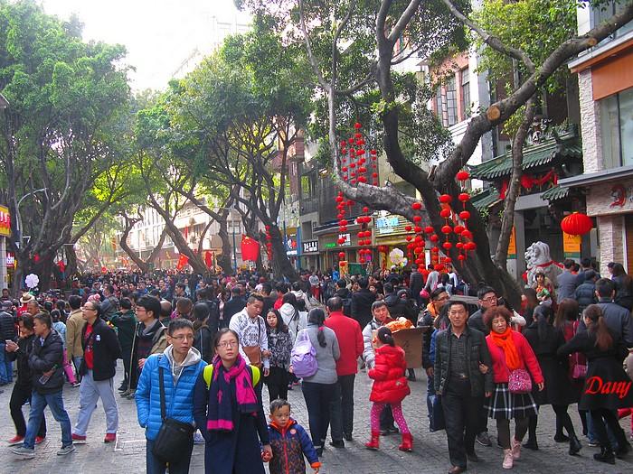 Chine 2015-marché aux fleurs Beijing Lu-1