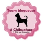 Team Blogeuse
