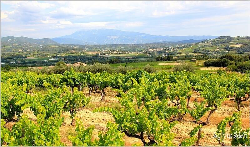 Vacances en Drome Provençale