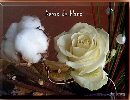 AVF 11 10 10 Danse du blanc (3)