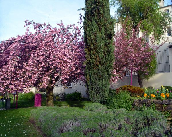 Le printemps des seniors à la Mairie du 13ème