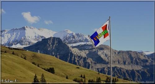 Le drapeau du Camps de Vénor