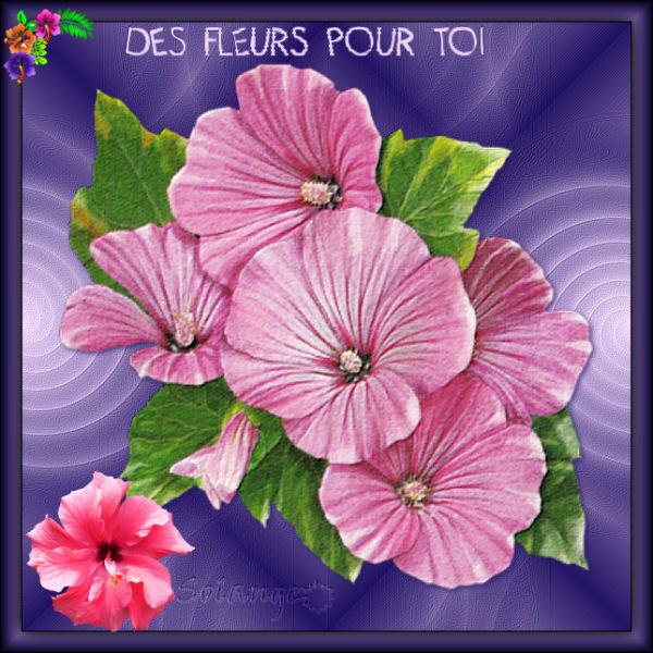 Des fleurs pour toi - Page 2 190904070903488668