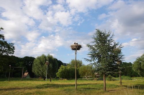 Images d'Alsace, l'Abbaye de Murbach
