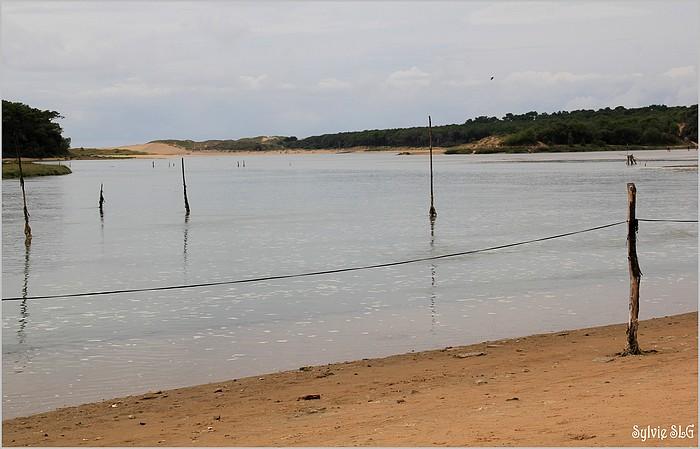 La route de l'huître - La Guittière
