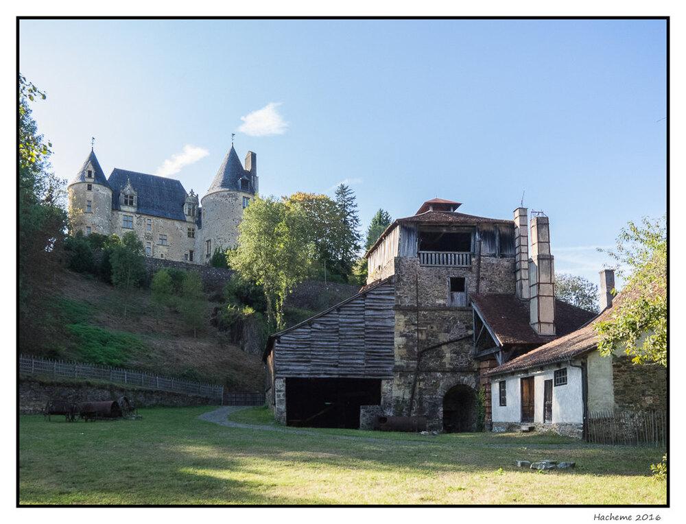 Le château et la forge de Savignac-Ledrier