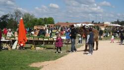 01 Mai 2016  Autour du jardin  CASTELNAU D'ESTRETEFONDS  31