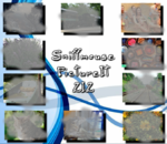 PictureIt 212 - Sniffmouse