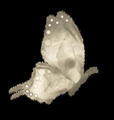 Tubes Sépia