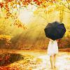 Icones parapluies