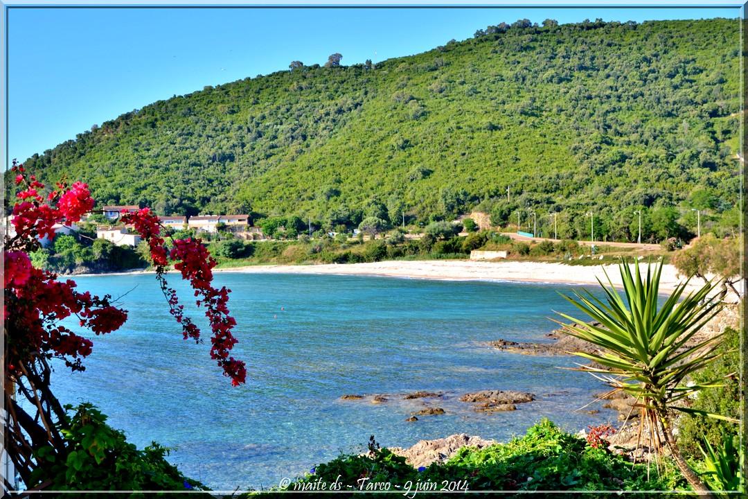Un petit air de vacances - Tarco - Corse