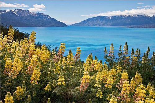 Elle photographie la Patagonie......