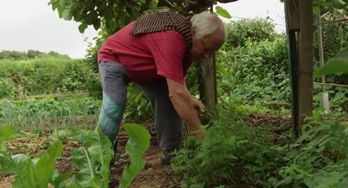Jardin Jardinier : Rencontre avec Pacha Papa