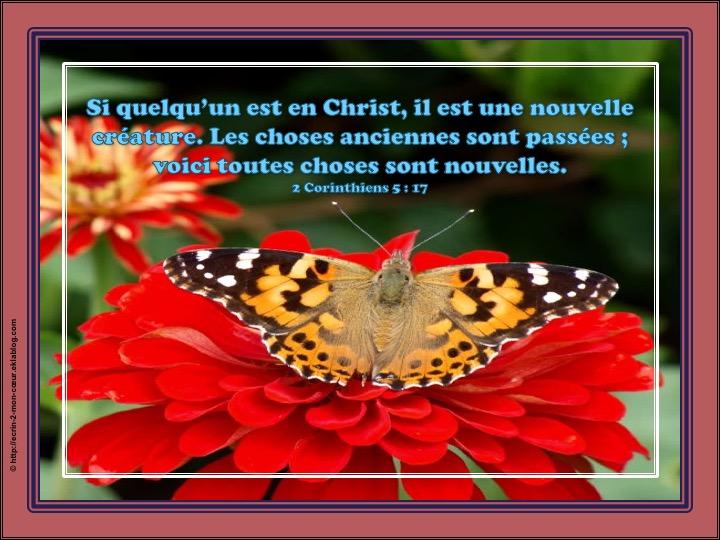 Si quelqu'un est en Christ, il est une nouvelle créature - 2 Corinthiens 5 : 17