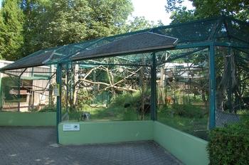Zoo Saarbrücken 2012 026