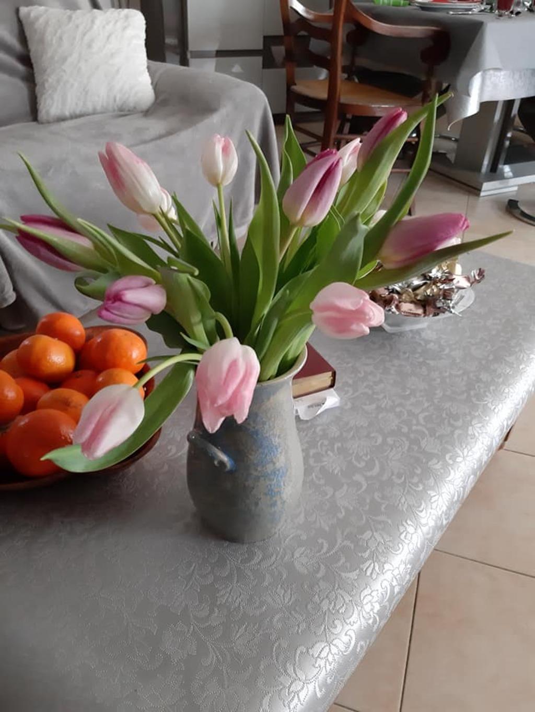 Tulipes !